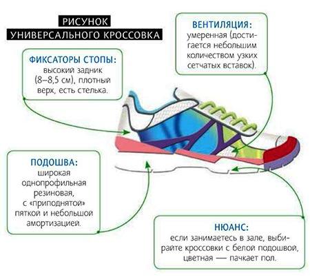 На что обратить внимание при выборе кроссовок