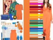 Сочетание цветов: оранжевый