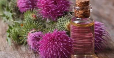 Репейное масло – подарок для кожи