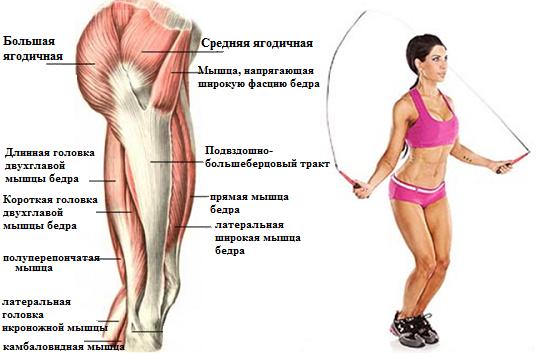 Какие мышцы тренируются при прыжках со скакалкой