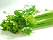 Сельдерей для похудения: диета, рецепты супа и салата
